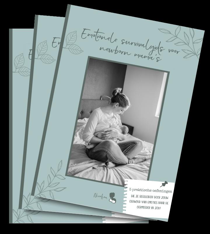 Emotionele survivalgids newborn moederschap